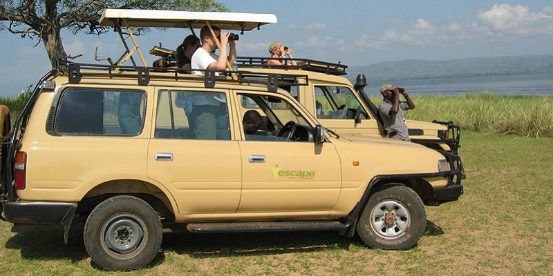 4 Days Car rental for Gorilla Trek & Lake Mburo Wildlife Tour
