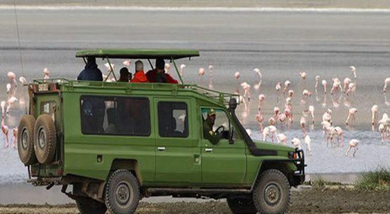 How to find cheap car rental in Rwanda