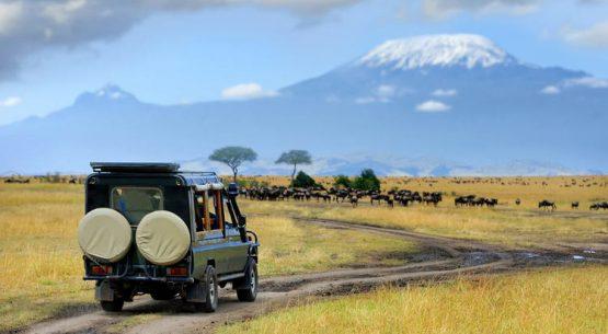 Budget for your Rwanda Self drive Car rental trip