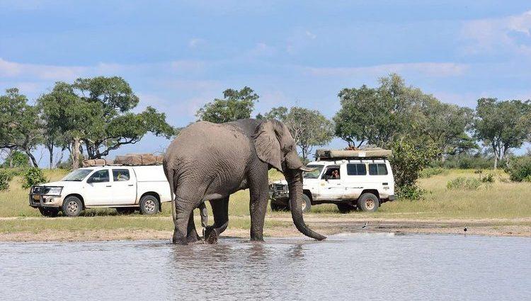 Self-Drive Car Rental and Safari in Rwanda